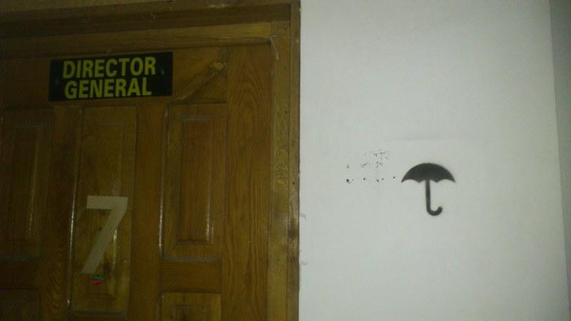 director cu umbrela_800x450