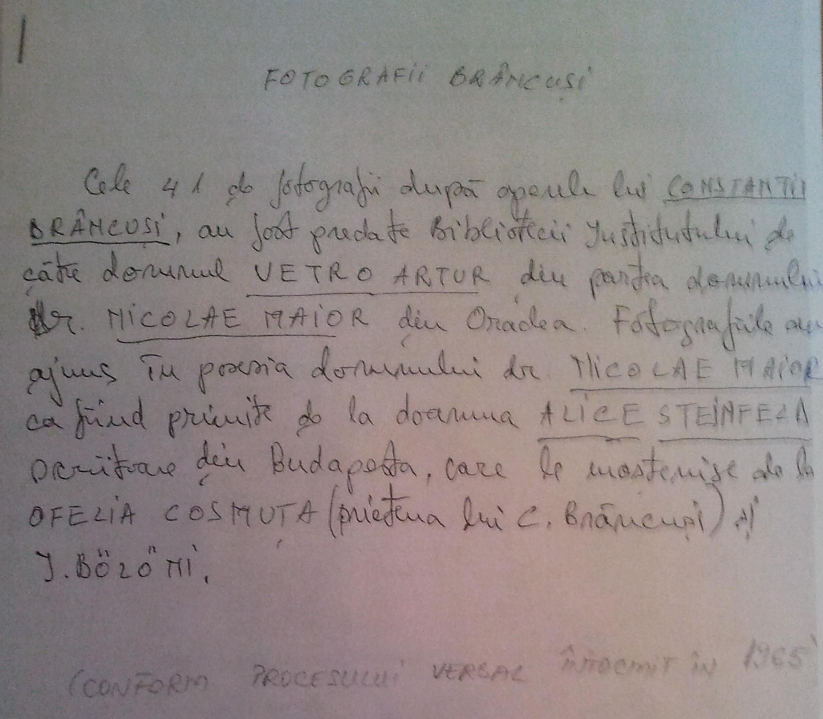 pvbrancusi